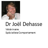 J Dehasse Coaching